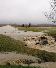 Excessive water drainage across field