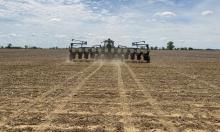 No till plsnting on Ohio farm